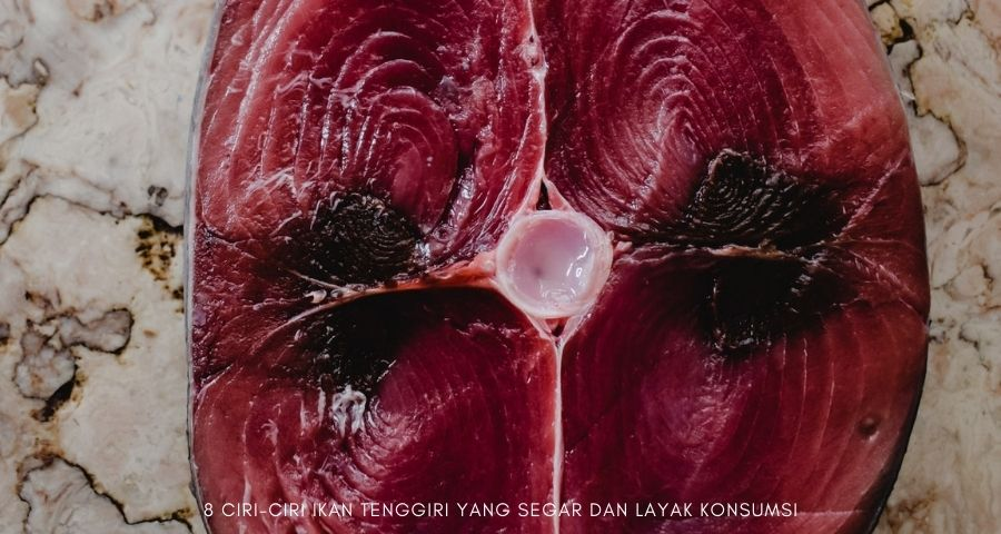ciri ikan tenggiri yang segar