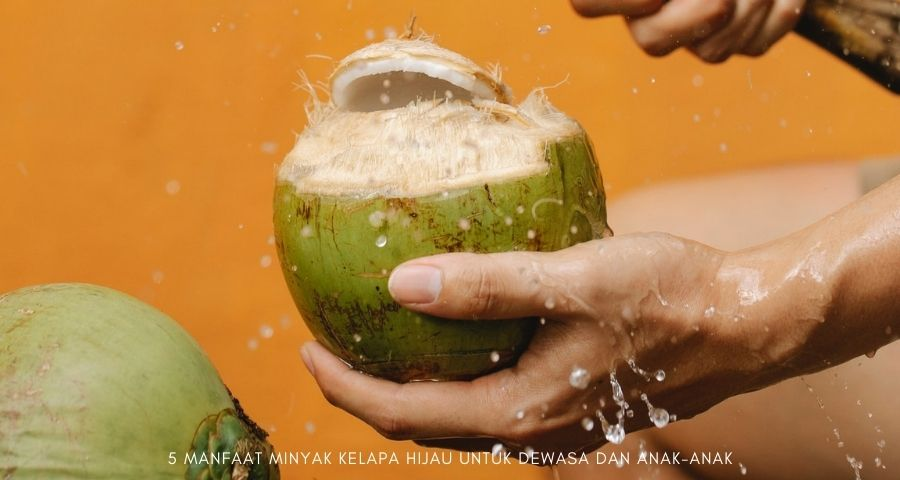 manfaat minyak kelapa hijau