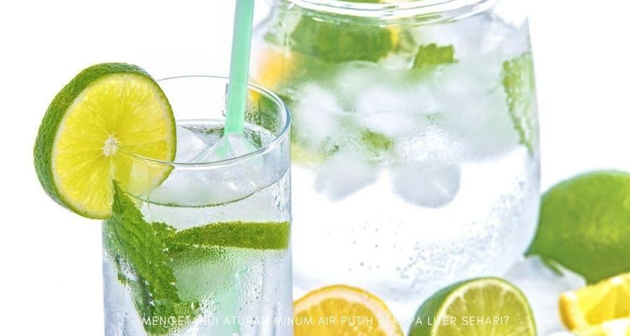 aturan minum air putih berapa liter sehari