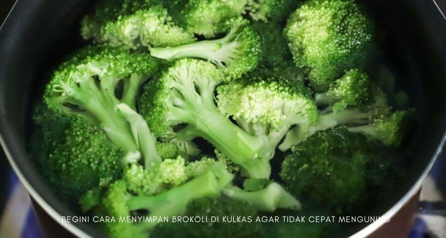 cara menyimpan brokoli di kulkas