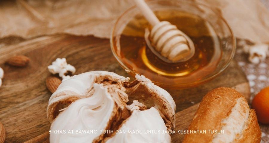 khasiat bawang putih dan madu