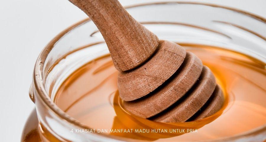 manfaat madu hutan untuk pria