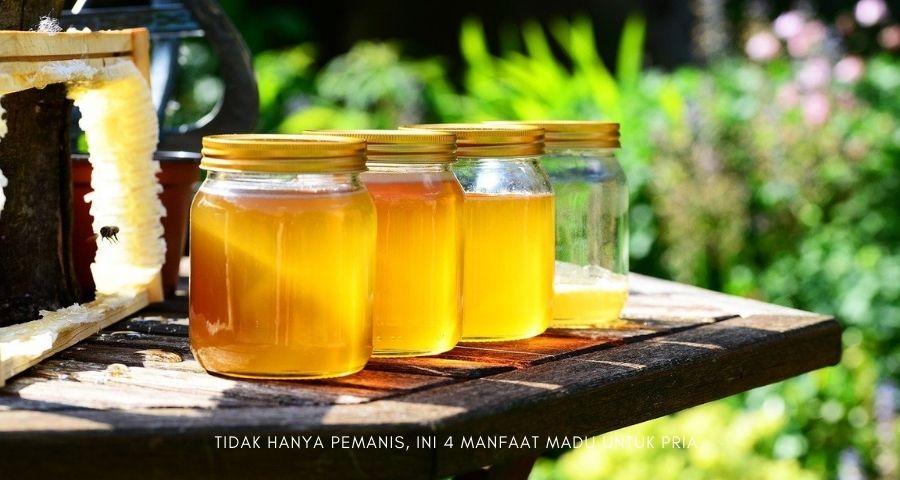 manfaat madu untuk pria